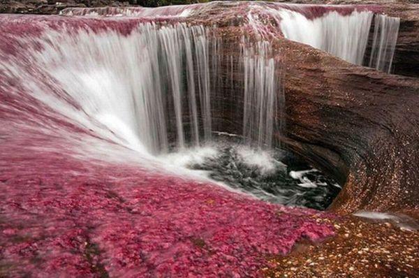 lac curcubeu columbia r
